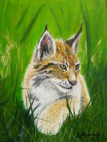 Lux im Gras von Jürg Meyerholz