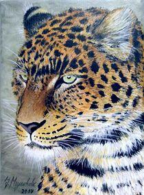 Leopardenkopf von Jürg Meyerholz
