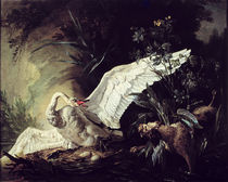 A Water Spaniel Attacking a Swan on its Nest by Jacques Charles Oudry