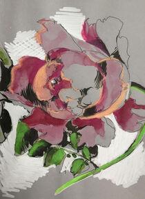 'Bauernrose' von Sonja Jannichsen