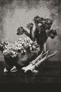 Still mit Tulpen, Hortensien und Rehbock by Petra Dreiling-Schewe