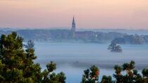 Morgennebel in den Elbauen von georgfotoart