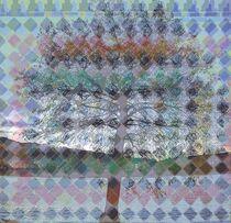Rhombic Scenery von Juergen Seidt