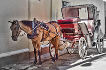 Kutsche in der Straße von Gabi Kaula