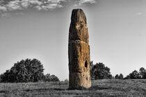 Großer Stein in der Natur von Gabi Kaula