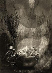 Still mit Vogelskelett by Petra Dreiling-Schewe
