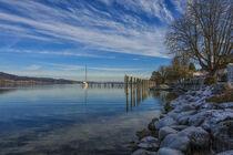 Ein Wintertag in Bodman - Uferbereich mit Jachthafen - Bodensee von Christine Horn