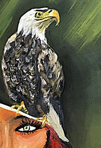 Follow the eagle von Vera Markgraf
