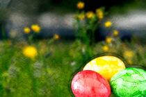 Konzept Ostern : Bunte Eier und Blumen von Michael Naegele