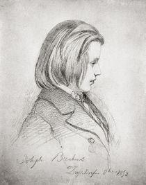 Portrait of Johanes Brahms  by Jean Joseph Bonaventure Laurens