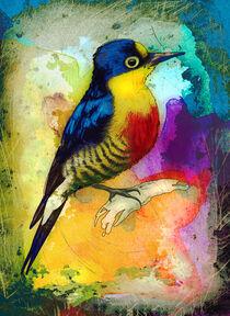 Woodpecker Madness von Miki de Goodaboom