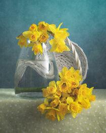 Gelbe Blumen / Yellow Flowers 4(9) von Nikolay Panov