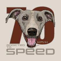 Süchtig nach Geschwindigkeit! von Rupert Schneider