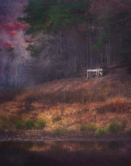 Pine-tree-lake-dock-50-van-gogh