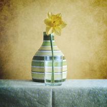 Striped Green Vase and Narcussus * Gestreifte grüne Vase und Narzisse 1(9) von Nikolay Panov