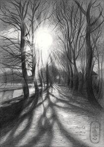 Marlot – 04-04-21 by Corne Akkers