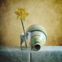Striped Green Vase and Narcussus * Gestreifte grüne Vase und Narzisse 2(9) von Nikolay Panov