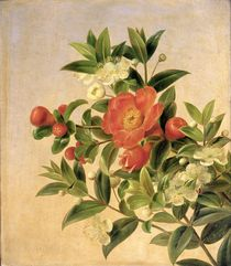 Flowers von Johan Laurents Jensen