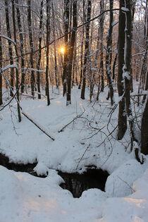Sonnenuntergang im Winterwald von mario-s