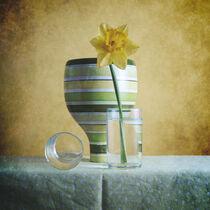 Striped Green Vase and Narcussus * Gestreifte grüne Vase und Narzisse 6(9) von Nikolay Panov