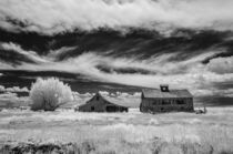 Abandoned Homestead II by Barbara Magnuson & Larry Kimball