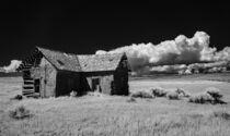 Abandoned Homestead by Barbara Magnuson & Larry Kimball