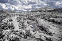 White Canyon von Barbara Magnuson & Larry Kimball