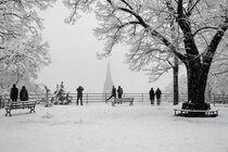 Winter in Freiburg von Patrick Lohmüller