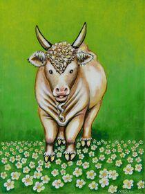 White Bull von Nicola Turnbull