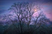 Cherokee Sunrise by William Schmid