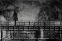 Dunkle Leidenschaften  von Bastian  Kienitz