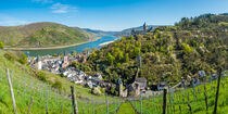 Bacharach mit Stahleck (1) by Erhard Hess