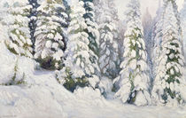 Winter Tale von Aleksandr Alekseevich Borisov