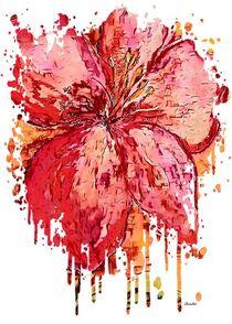 Hibiscus by eloiseart