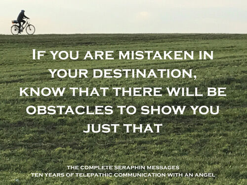Seraphin-meme-obstacles-whole