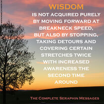 WISDOM IS ACQUIRED BY TAKING DETOURS by Rosie Jackson