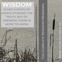 WISDOM IS KNOWING THERE IS MORE TO KNOW by Rosie Jackson