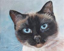 Katzenportrait - Kiki von Ulla Schönhense