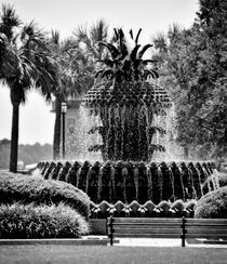 Pineapple Fountain  von O.L.Sanders Photography