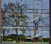 Glasfassadenspiegelung von Edgar Schermaul