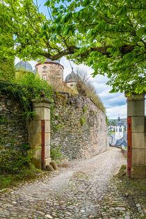 Schloss Gemünden 37 von Erhard Hess