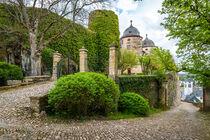 Schloss Gemünden 58 von Erhard Hess
