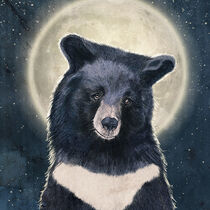Moon Bear Portrait by Paula  Belle Flores