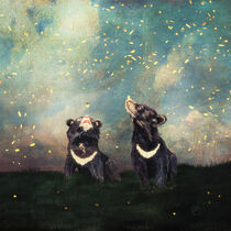 Brother Bears and the Fireflies Show by Paula  Belle Flores
