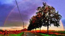 Regenbogenpanorama von Edgar Schermaul