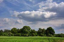 Bäume mit Wolken von Edgar Schermaul