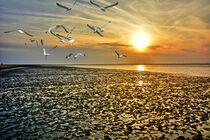 Abendsonne im Watt von Edgar Schermaul