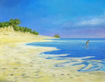 beach run / Strandlauf von artdemo