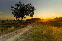 Sonnenuntergang in den Boberger Dünen von image-eye-photography