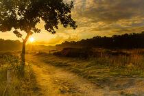 Sonnenuntergang nach dem Regen von image-eye-photography